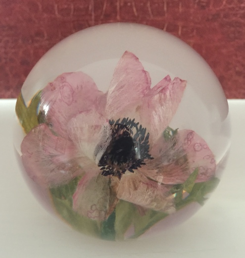 Anenome paperweight £85